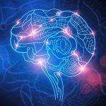 Układ nerwowy, umysł i biovitalna woda